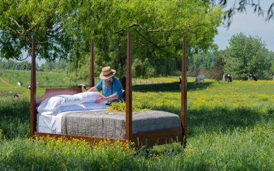 Dorm com un tronc també a l'estiu
